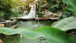 高端的婚纱礼服应做一定的保美与清洗
